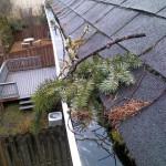 Portland Gutter Debris Removal
