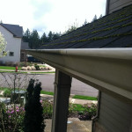Gutter Cleaning & Whitening
